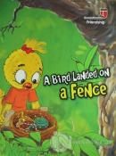 A Bird Landed on a Fence - Freindship