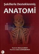 Anatomi Şekillerle Desteklenmiş