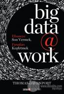 Big Data @ Work (Ciltli)