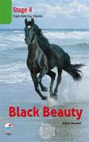 Black Beauty Cd'li (Stage 4)