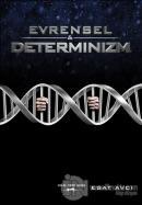 Evrensel ve Determinizm