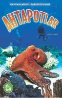 Hayvanların Sıradışı Dünyası - Ahtapotlar