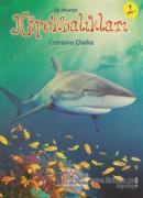 İlk Okuma - Köpekbalıkları