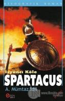 İsyancı Köle - Spartacus