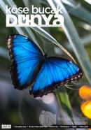 Köşe Bucak Dünya Dergisi Sayı: 52 Kasım - Aralık 2020
