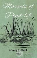 Marvels of Pond-Life