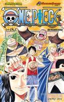 One Piece 24. Cilt