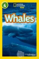 Whales: Level 4