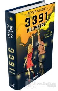 3391 Kilometre (Ciltli)