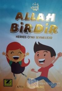 Allah Birdir