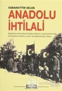 Anadolu İhtilali 2 Kitap Takım
