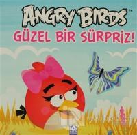 Angry Birds - Güzel Bir Sürpriz! (Ciltli)