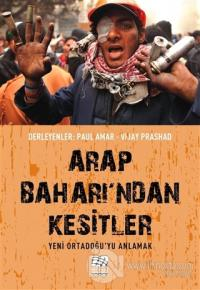 Arap Baharı'ndan Kesitler Paul Amar