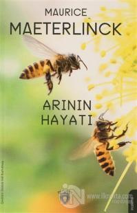 Arının Hayatı