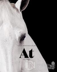 At Kitabı - Resim Sanatında Atlar