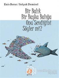 Bir Balık Başka Bir Balığa Onu Sevdiğini Söyler mi?