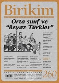 Birikim Aylık Edebiyat Kültür Dergisi Sayı: 260