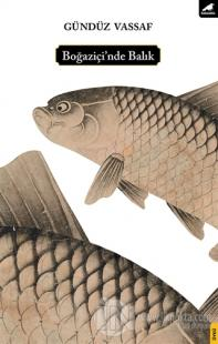 Boğaziçi'nde Balık