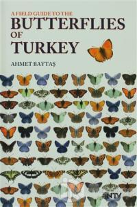 Butterflies of Turkey