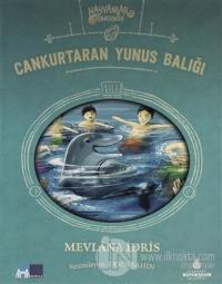Cankurtaran Yunus Balığı