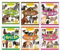 Çıkartmalı Hayvanlar Serisi (6 Kitap Takım) Kolektif