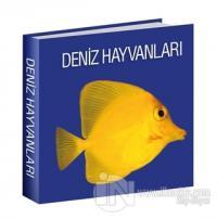 Deniz Hayvanları (Ciltli)
