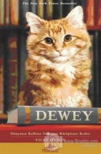 Dewey Dünyanın Kalbine Dokunan Kütüphane Kedisi