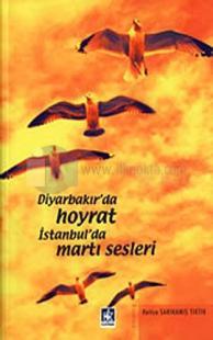 Diyarbakır'da Hoyrat İstanbul'da Martı Sesleri