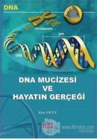 DNA Mucizesi ve Hayatın Gerçeği