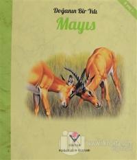 Doğanın Bir Yılı - Mayıs