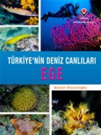 Ege - Türkiye'nin Deniz Canlıları (Ciltli)