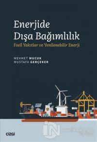 Enerjide Dışa Bağımlılık Mehmet Mucuk