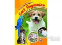 Evcil Hayvanlar - Hayvanları Tanıyorum