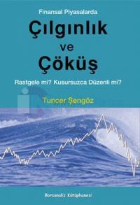 Finansal Piyasalarda Çılgınlık ve Çöküş