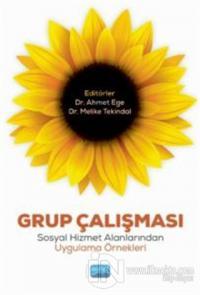 Grup Çalışması Ahmet Ege