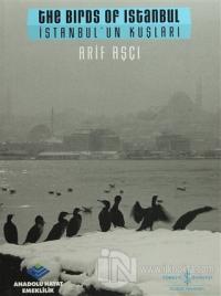 İstanbul'un Kuşları / The Birds ofm Istanbul