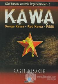 KAWA: Kürt Sorunu ve Etnik Örgütlenmeler 1