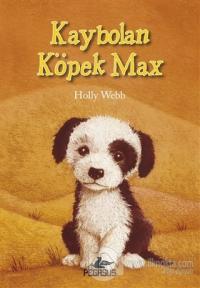 Kaybolan Köpek Max