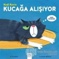 Kedi Kevin Kucağa Alışıyor