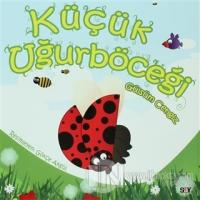 Kelebek Kitapları (10 Kitap Takım)