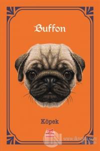 Köpek Georges-Louis Leclerc Comte de Buffon