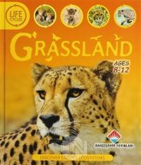 Life Cycles - Grassland (Ciltli)
