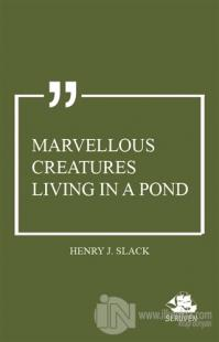 Marvellous Creatures Living in a Pond