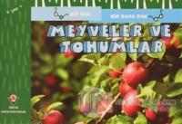 Meyveler ve Tohumlar - Bir Bak Bir Daha Bak