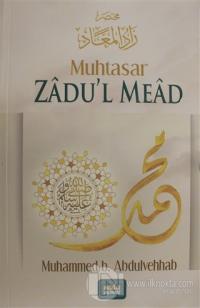 Muhtasar Zadu'l Mead %20 indirimli Şeyh Muhammed b. Abdulvehhab