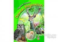 Orman Hayvanları - Hayvanları Tanıyorum