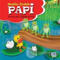 Papi Sayıları Öğreniyor - Mutlu Ördek