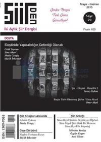 Şiirden İki Aylık Şiir Dergisi - Sayı: 29 Mayıs-Haziran