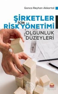 Şirketler İçin Risk Yönetimi - Olgunluk Düzeyleri