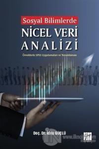 Sosyal Bilimlerde Nicel Veri Analizi